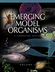 Emerging Model Organisms: A Laboratory Manual, Volume 1