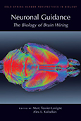 Neuronal Guidance: The Biology of Brain Wiring