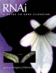 RNAi: A Guide to Gene Silencing