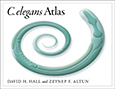 C. elegans Atlas cover art